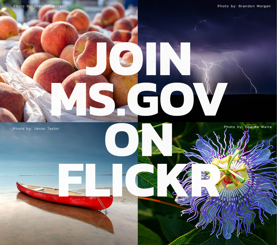 Join us on flickr