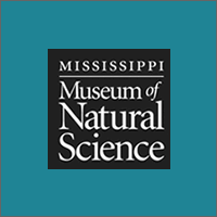 Natural Science Museum logo